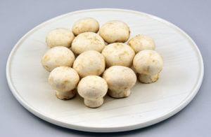 蘑菇(洋菇)
